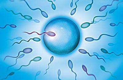 男性不育不孕原因详细介绍
