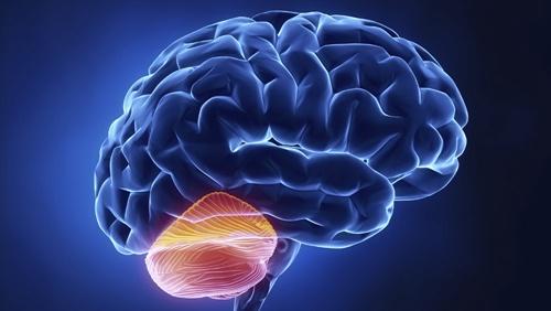 脑炎怎么进行治疗