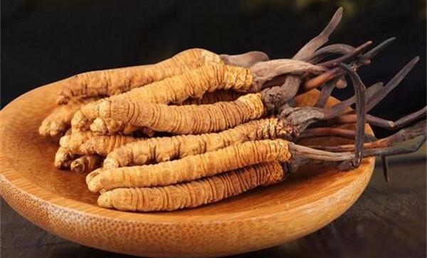研究表明:冬虫夏草无法合成抗癌药物喷司他丁