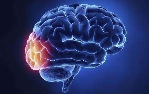 脑膜炎是怎么引起的