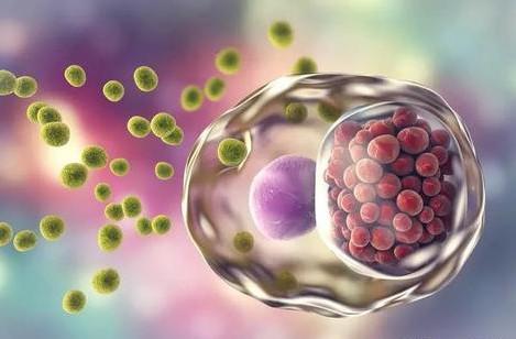 生殖器疱疹怎么预防